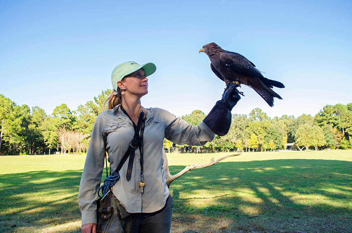 Lady holding a Yellow-billed Kite at the Center for Birds of Prey in Charleston South Carolina
