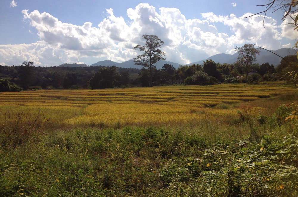 The countryside of Pai, Thailand, where Kellie Mogg traveled during her Gap Year Experience