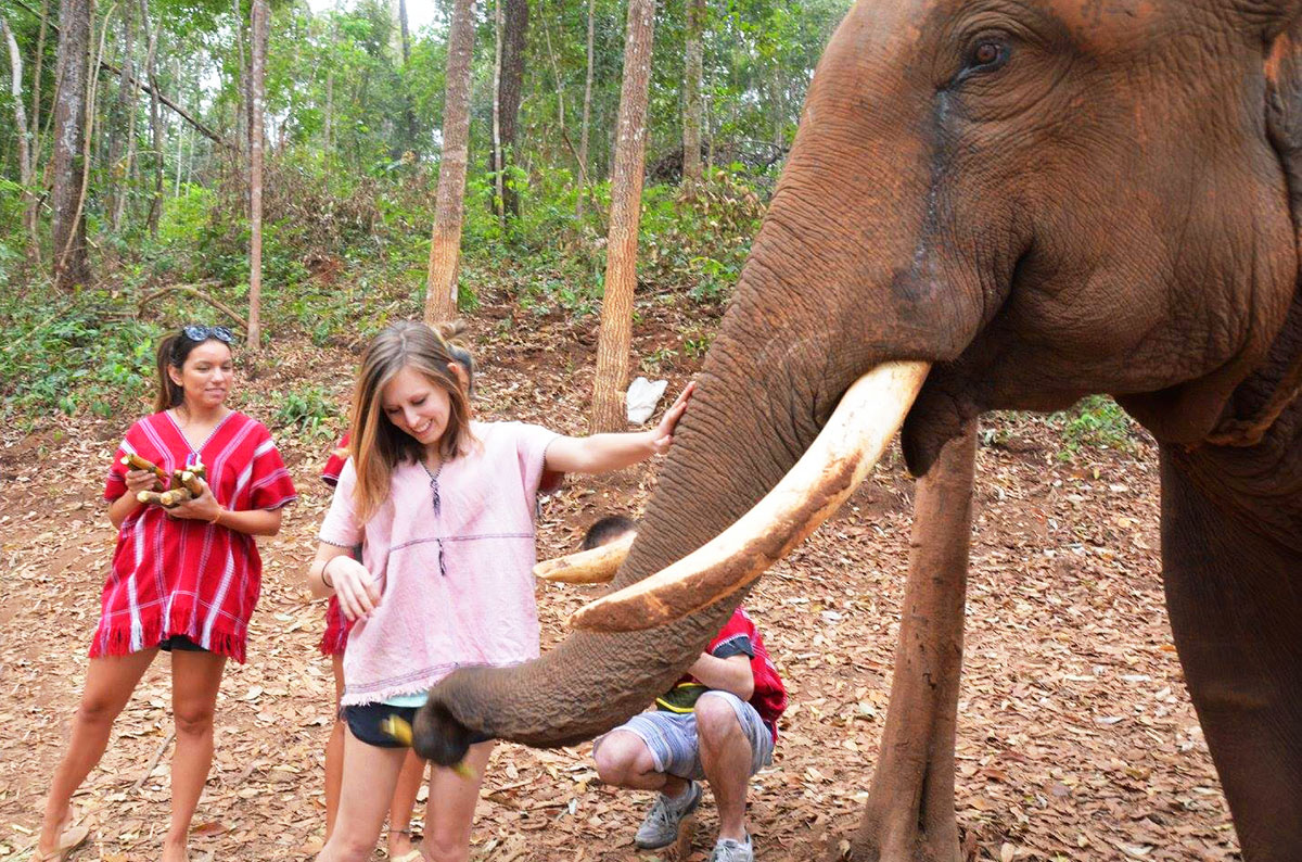 Leslie with a male elephant at Elephant Jungle Paradise Park near Chiang Mai Thailand