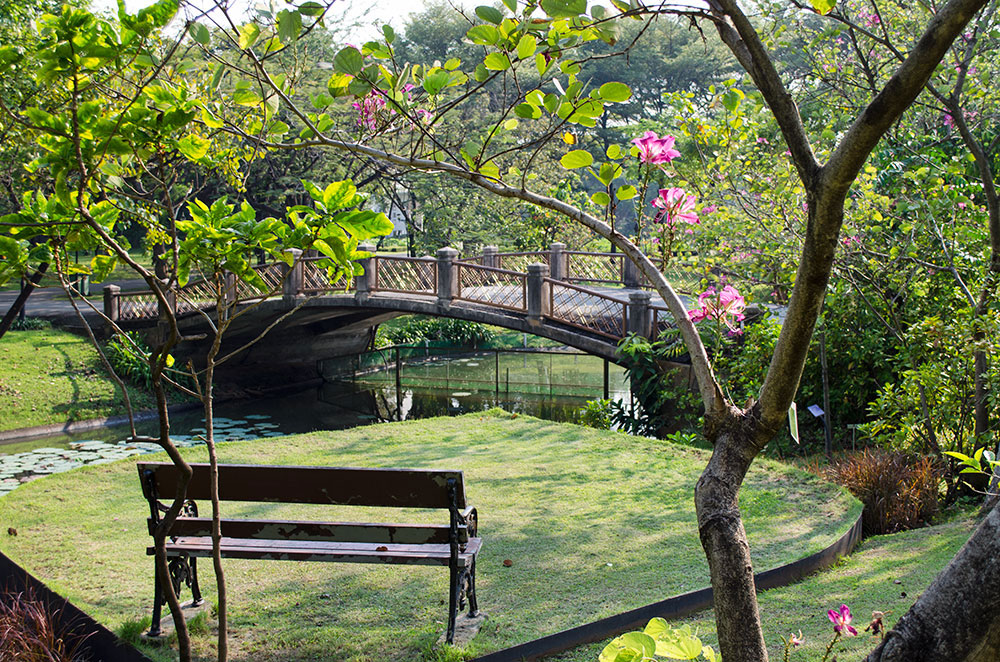 A bench in front of a bridge in Queen Sirikit Park