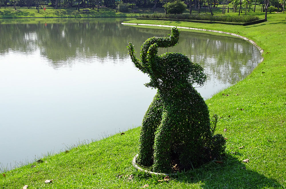 A bush sculpted into the shape of an elephant in Queen Sirikit Park