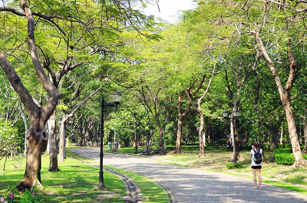 A path winding through Queen Sirikit Park in Bangkok