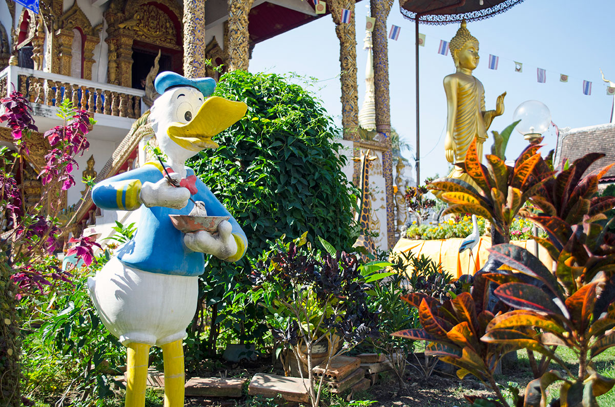 Donald Duck at Wat Buppharam Temple in Chiang Mai Thailand