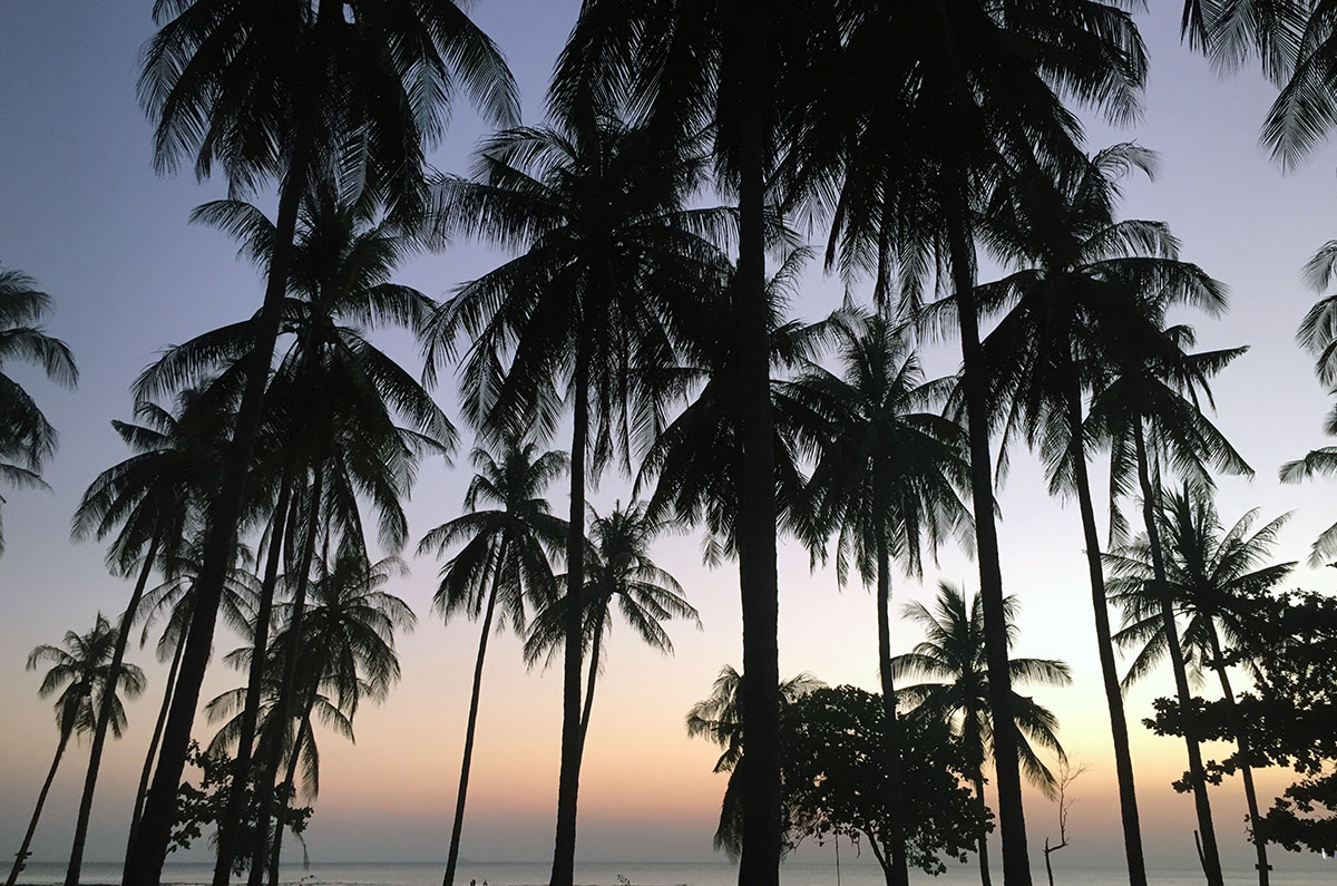Palm trees in front of a beautiful sky as the sun sets in Koh Lanta